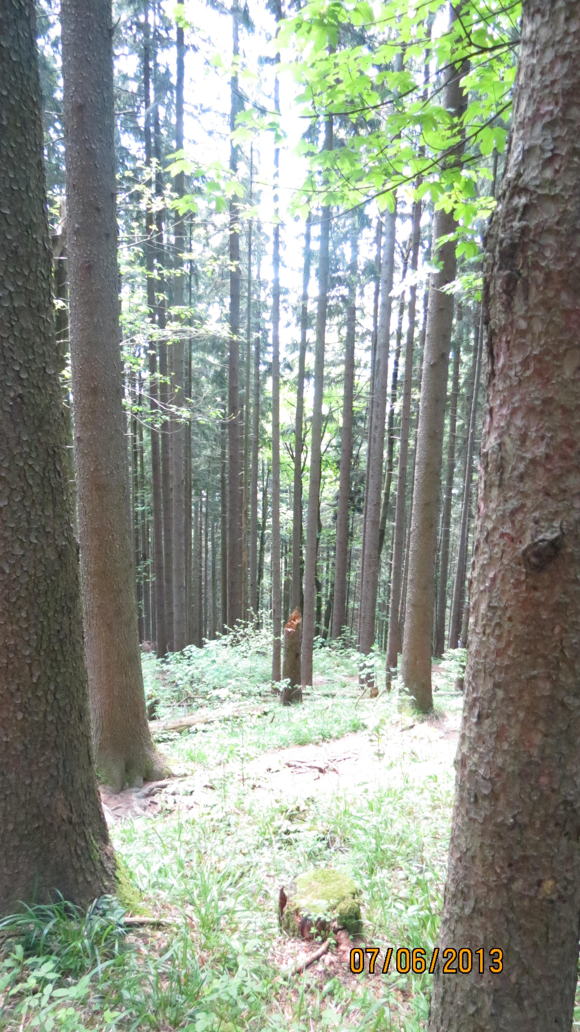Allemagne 2012 243