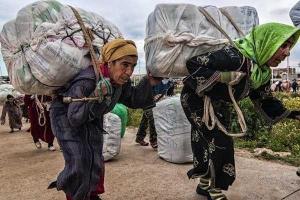 mule-femmes-marocaines-supporter-le-poids-litterale-de-nourrir-leurs-familles
